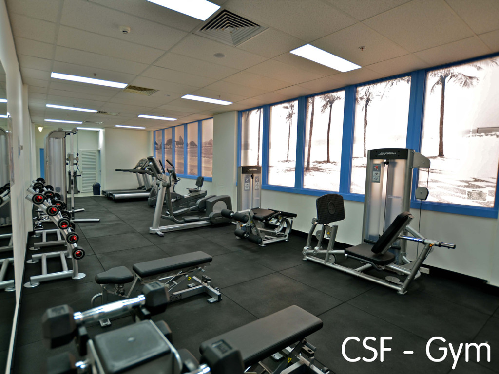 58b1eba807__CSF photo of fitness facilities.jpg